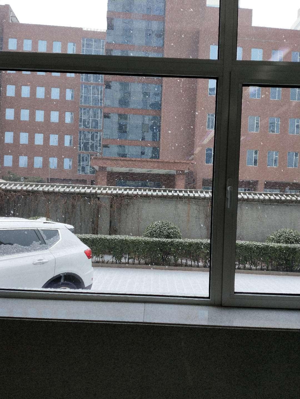 附2019-02-12雪景